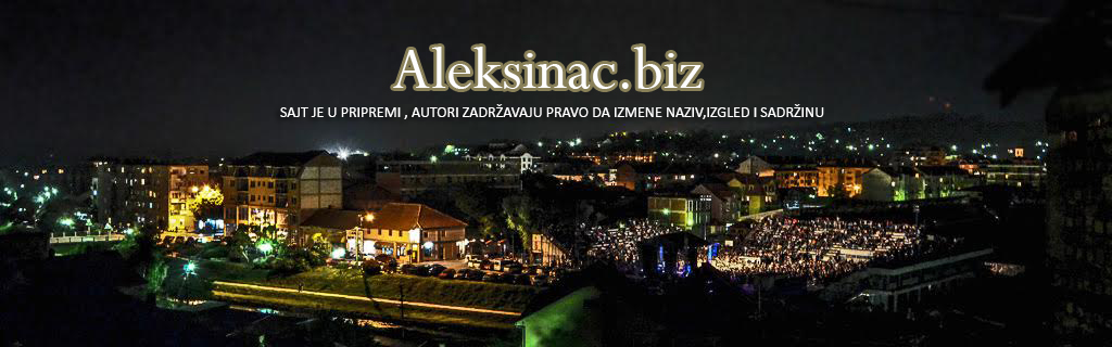 Aleksinac biz Logo